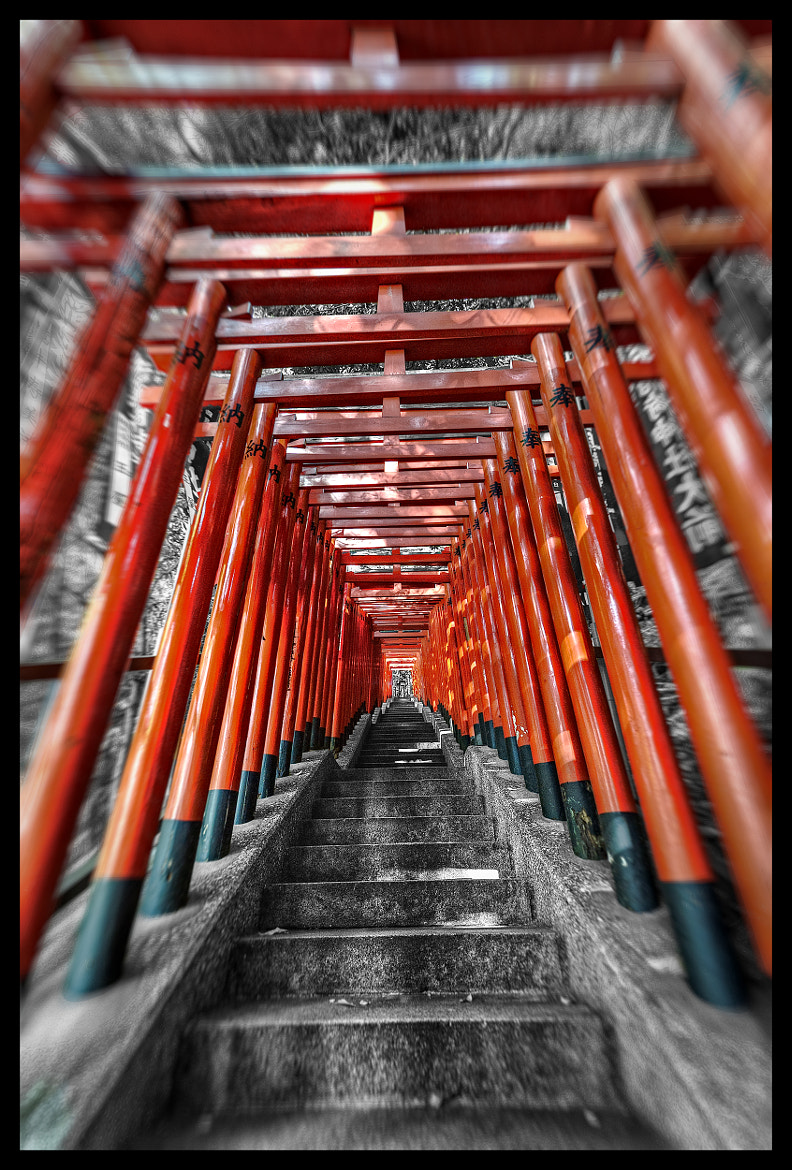 Photograph Torii Story Redux by Jon Sheer on 500px