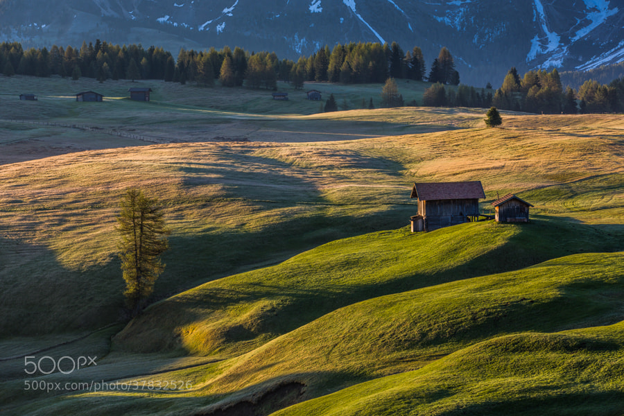 Photograph Morning in Alpe di Siusi by Hans Kruse on 500px