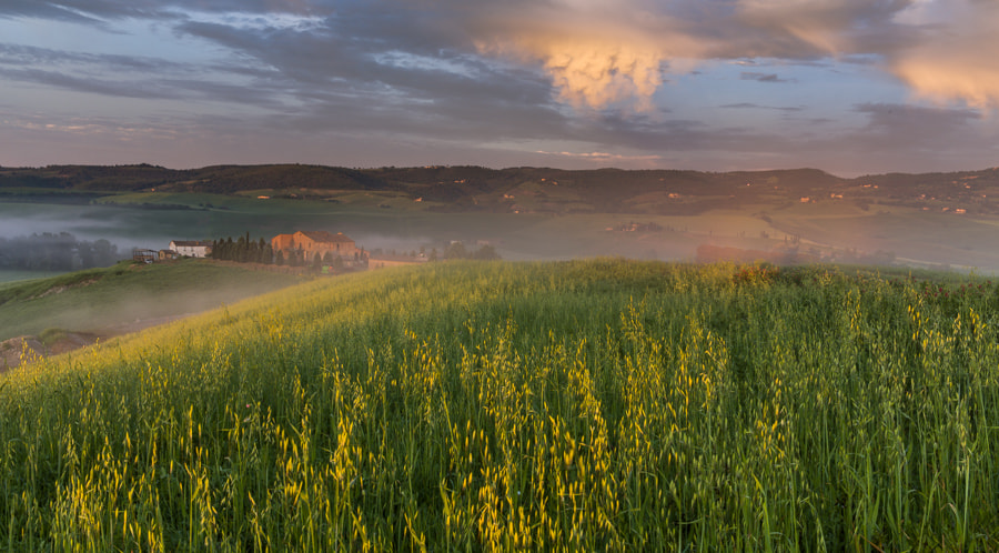 """<a href=""""http://www.hanskrusephotography.com/Workshops/Tuscany-May-12-16-2014/29524379_ftL23j#!i=2525403987&k=RDBGKPj&lb=1&s=A"""">See a larger version here</a>  This photo was taken during a photo workshop in May 2013."""