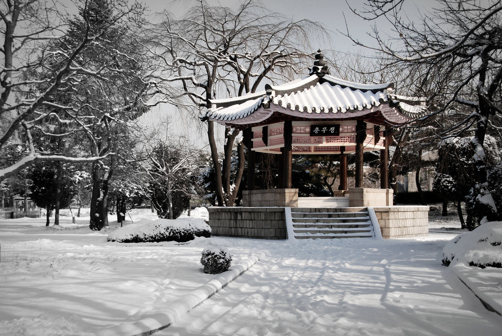 Photograph Pagoda in the snow by waynekorea on 500px