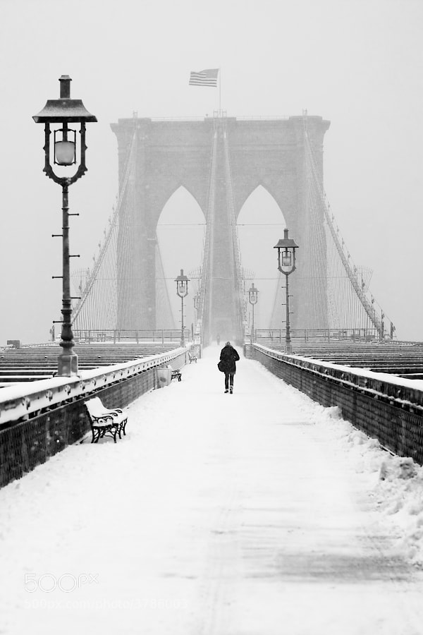 Alone on the Bridge  by Anthony Pitch on 500px.com