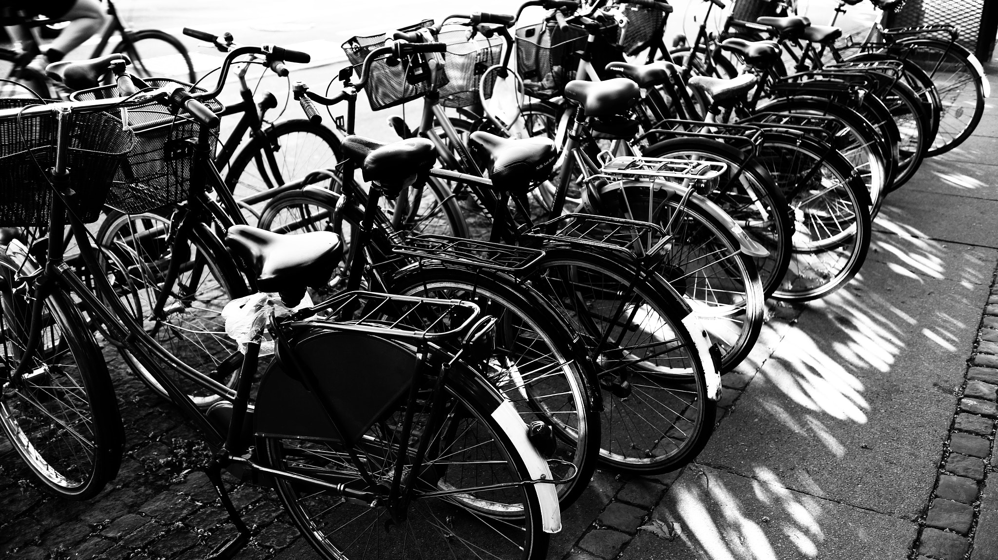 Photograph Bikes by Sir G on 500px