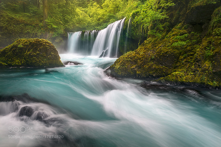 Photograph Raging Spirit by Exploring Light Photography on 500px