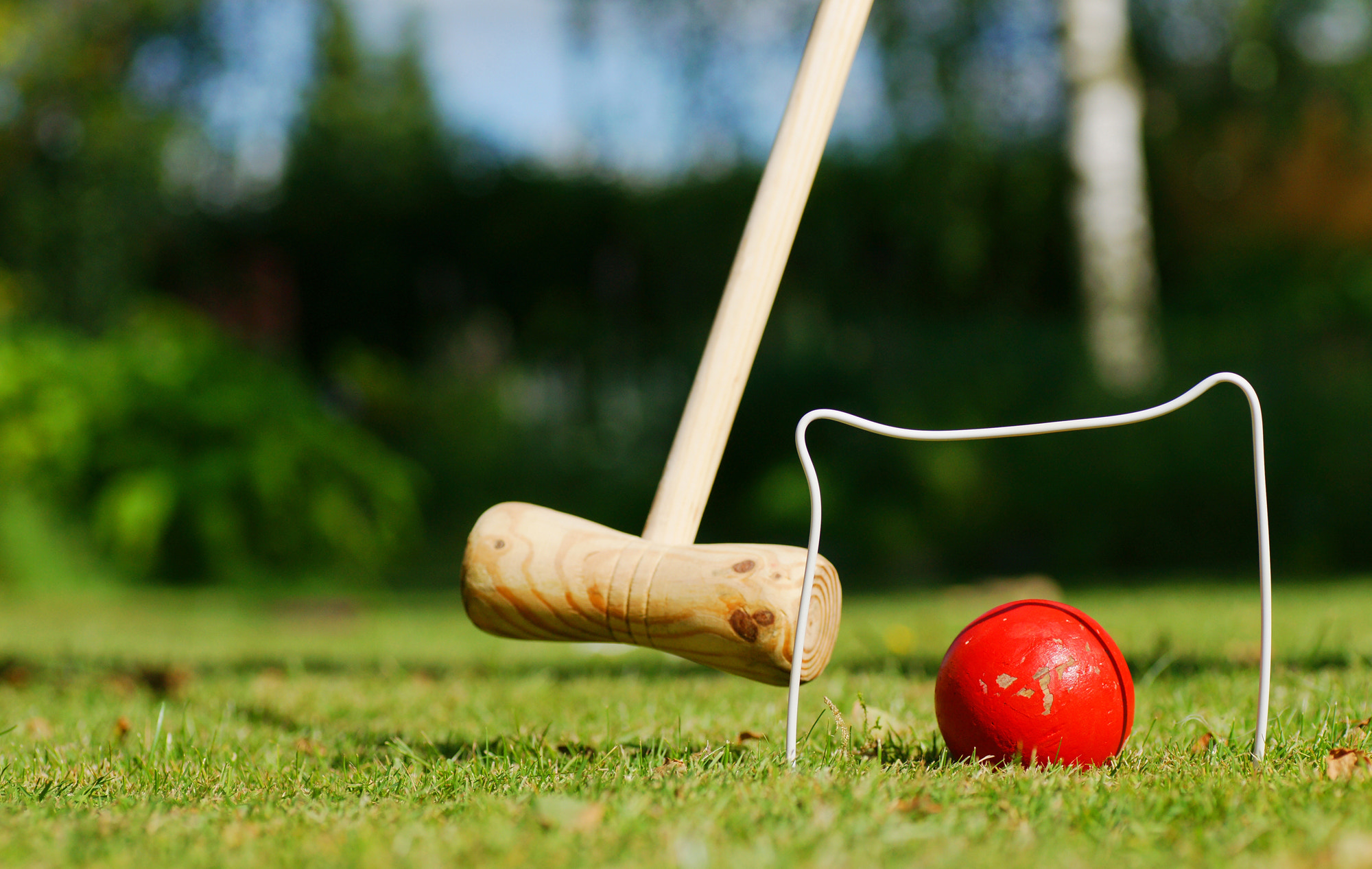 Photograph Croquet by Kasper Nymann on 500px