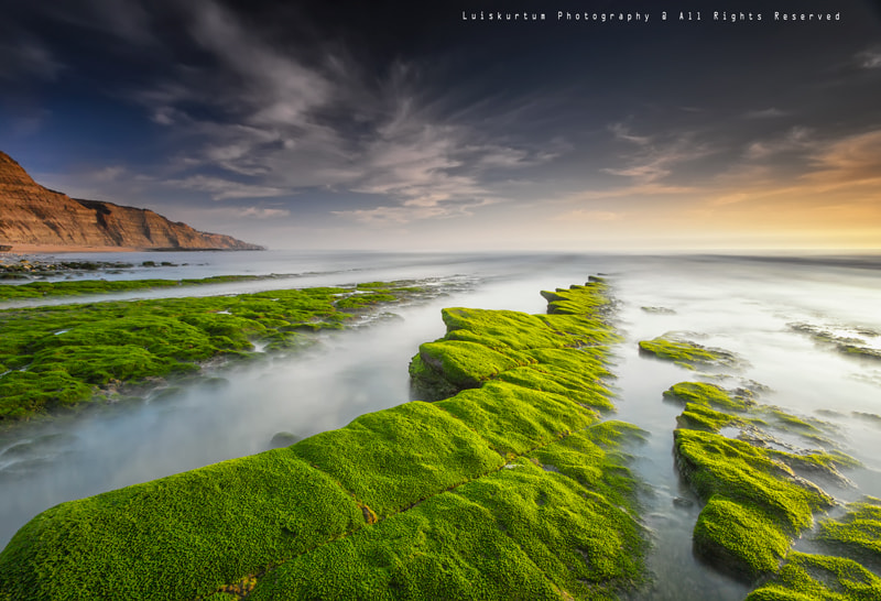 Photograph The Green Carpet... by Luis Silva on 500px
