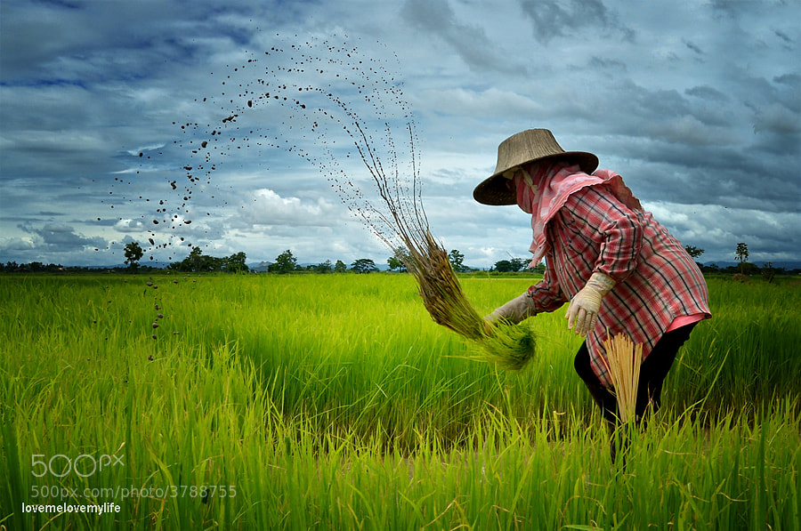 North of thailand by lovemelovemylife  on 500px.com