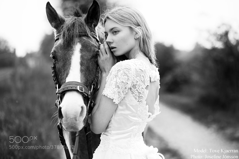 Photograph Tove by Josefine Jönsson on 500px