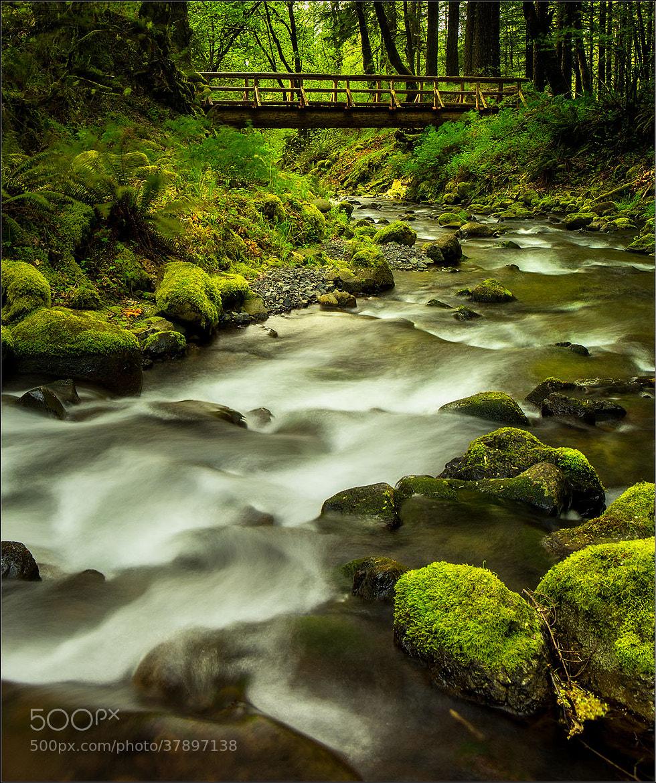 Photograph The bridge across the stream by Brian Clark on 500px