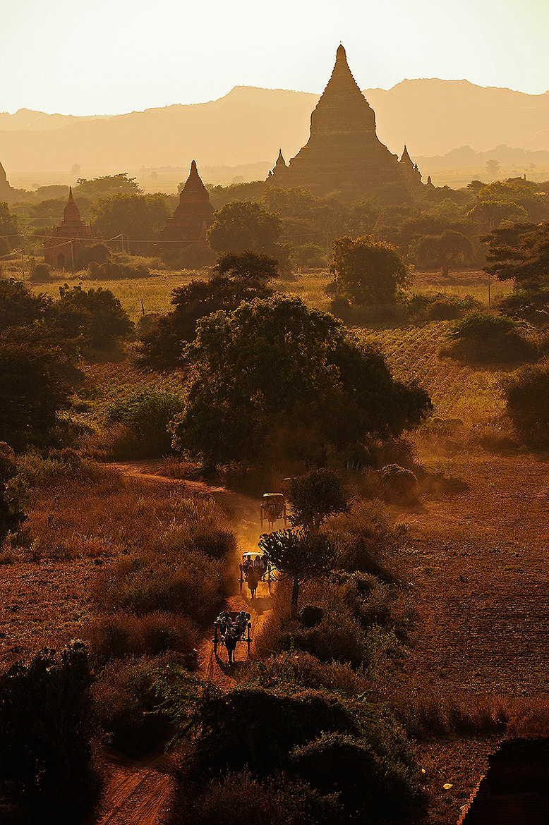 Photograph Horse cars in Bagan by Puchong Pannoi on 500px