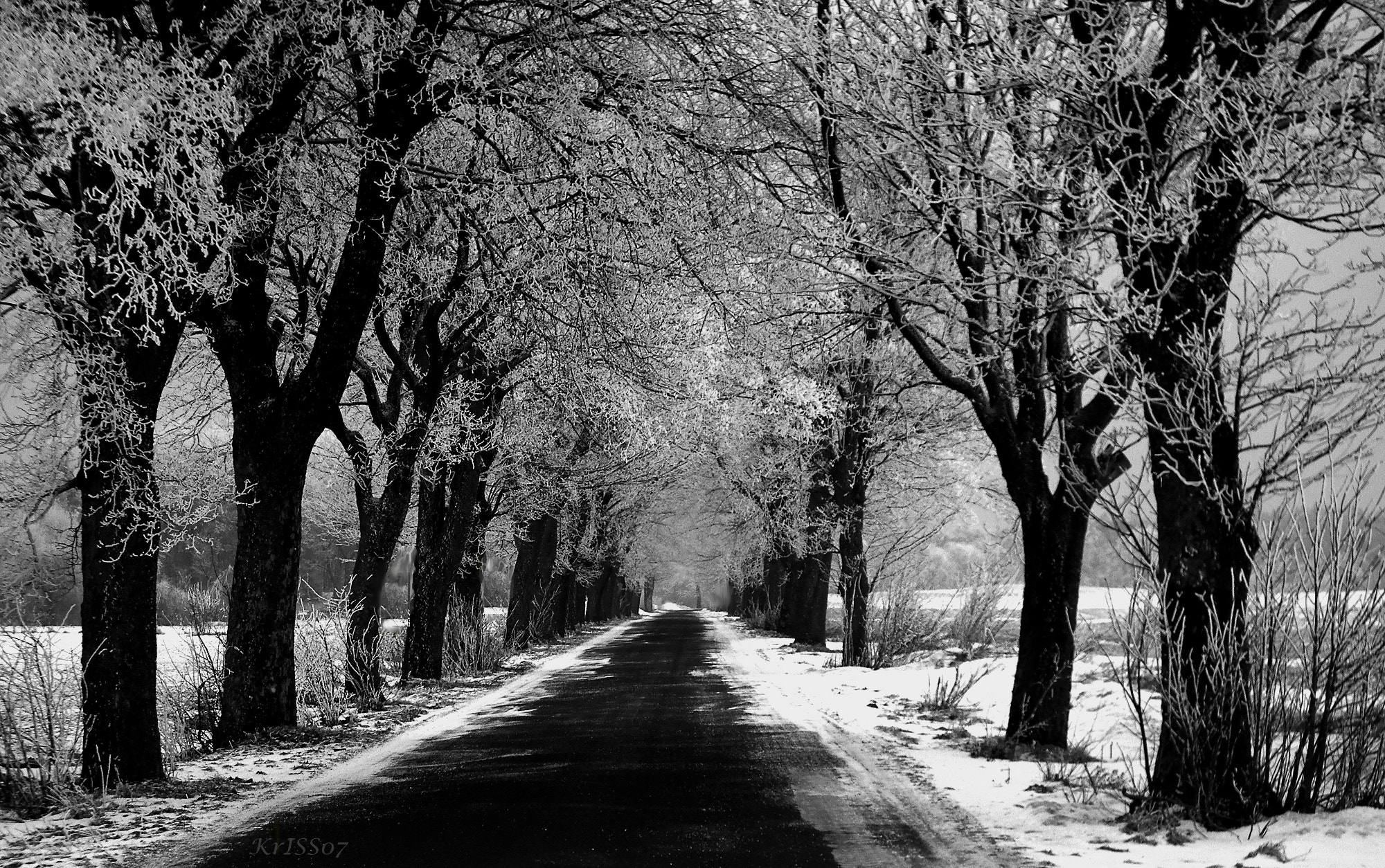 Photograph Frosty road by KrISS Ch. on 500px