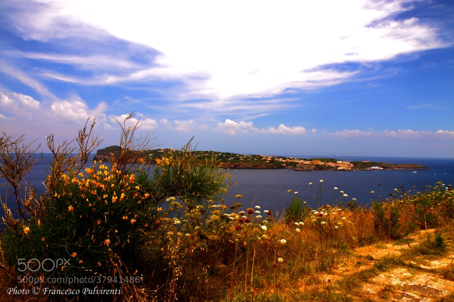 Photograph Isola di Ventotene by Pulvirenti Francesco on 500px