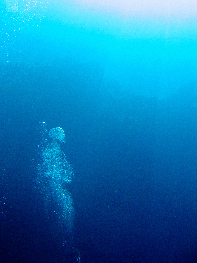 Photograph Underwater Air Ghost by Andreas Geisen on 500px
