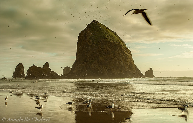Photograph Haystack Rock by Annabelle Chabert on 500px