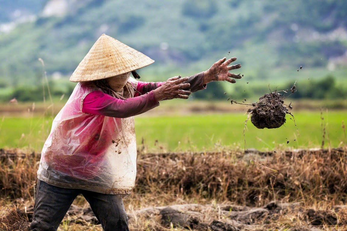 Photograph The Fields of Nha Trang by Nicole S. Young on 500px
