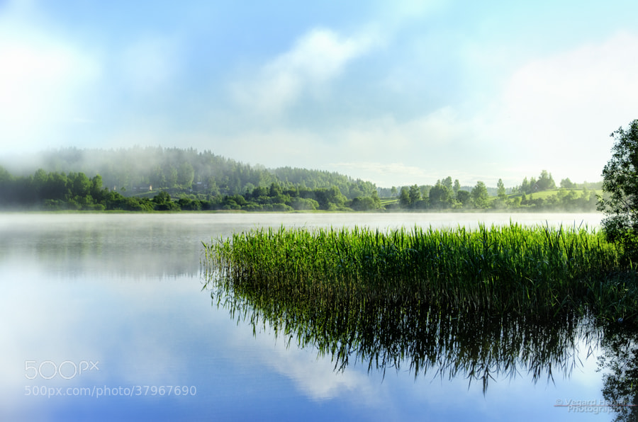 Photograph Early morning mist by Vegard Hamar on 500px