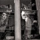 2 mannequins in window