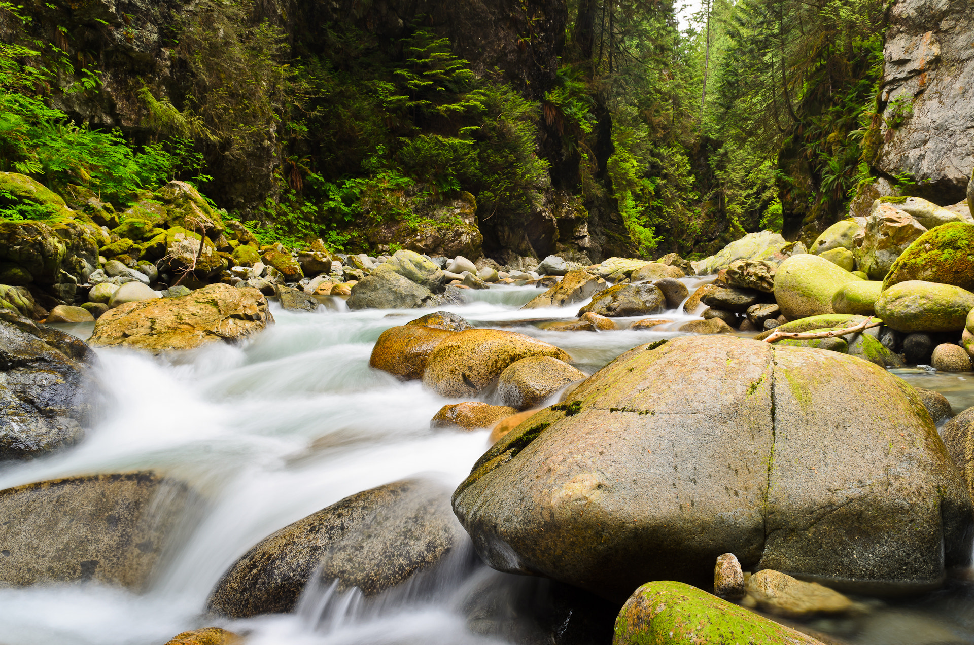 Photograph Lynn Canyon Creek by dohitsch on 500px