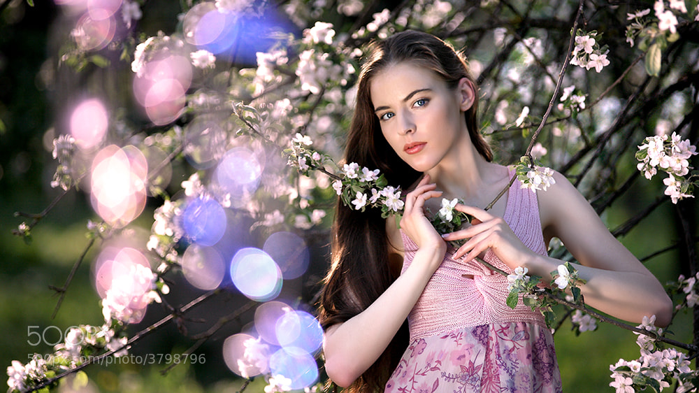 Photograph Spring by Kirill Rusakevich on 500px