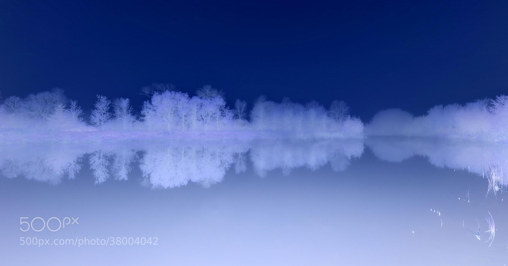 Photograph Frosty Fantasy by AZ Imaging on 500px