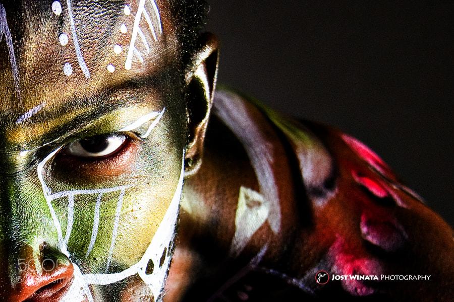 Photograph Afrikaanse vegter by Jost Winata on 500px