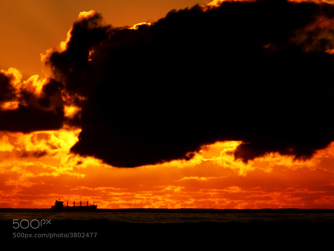 Photograph Freighter by Matt de Waard on 500px