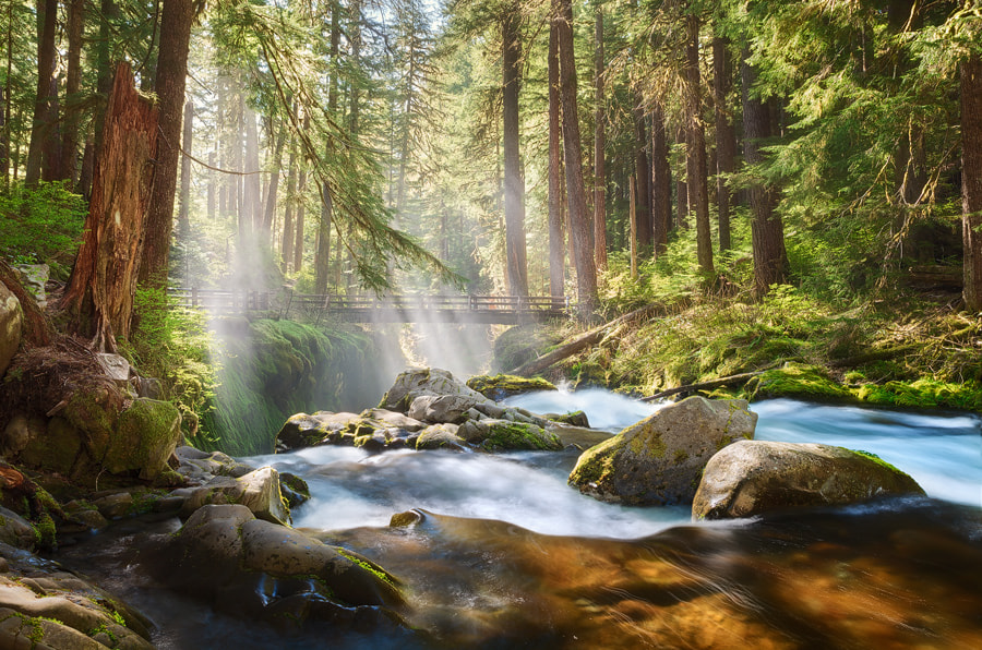 Photograph Sol Duc River by Michael  Breitung on 500px