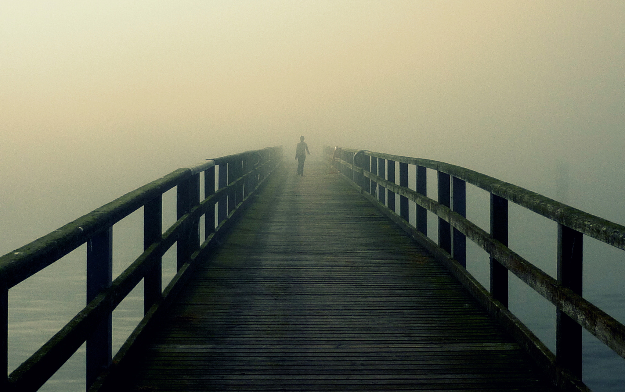 Photograph On the footbridge by Sophia Babel on 500px