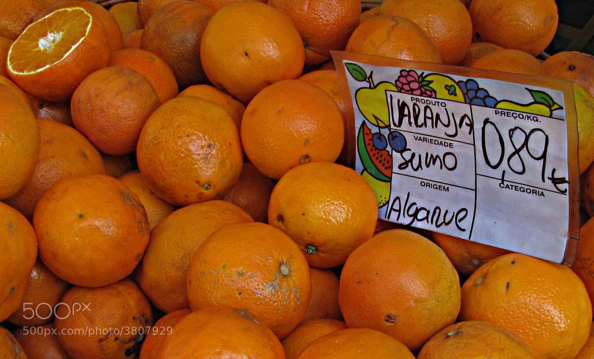 Photograph Portuguese oranges from Algarve by Artur Brites on 500px