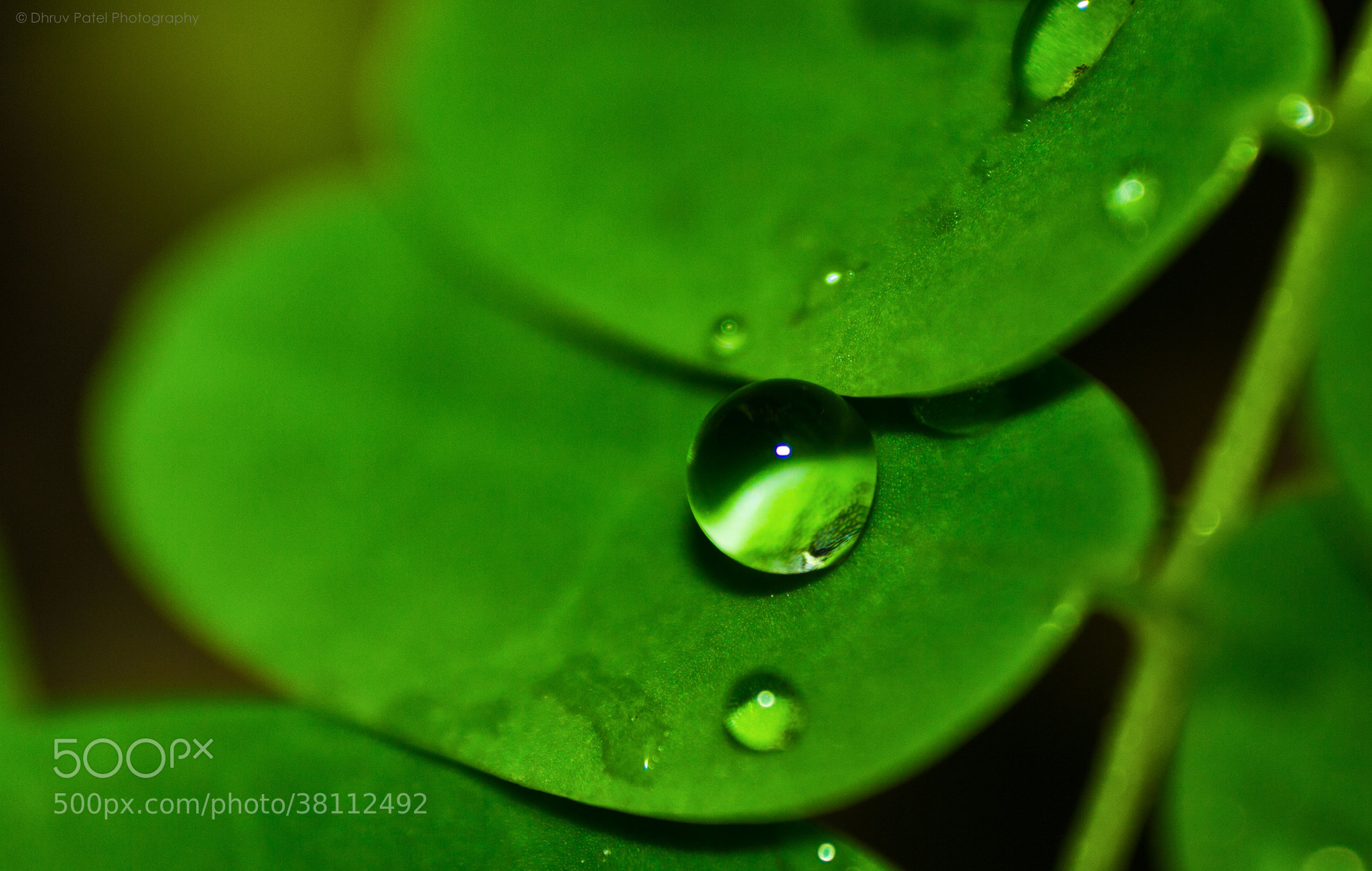 Photograph Monsoon Crystal Ball by Dhruv Patel on 500px