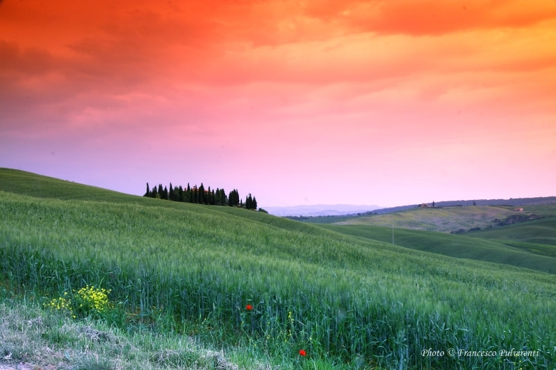 Photograph Val d'Orcia-Toscana by Francesco Pulvirenti on 500px