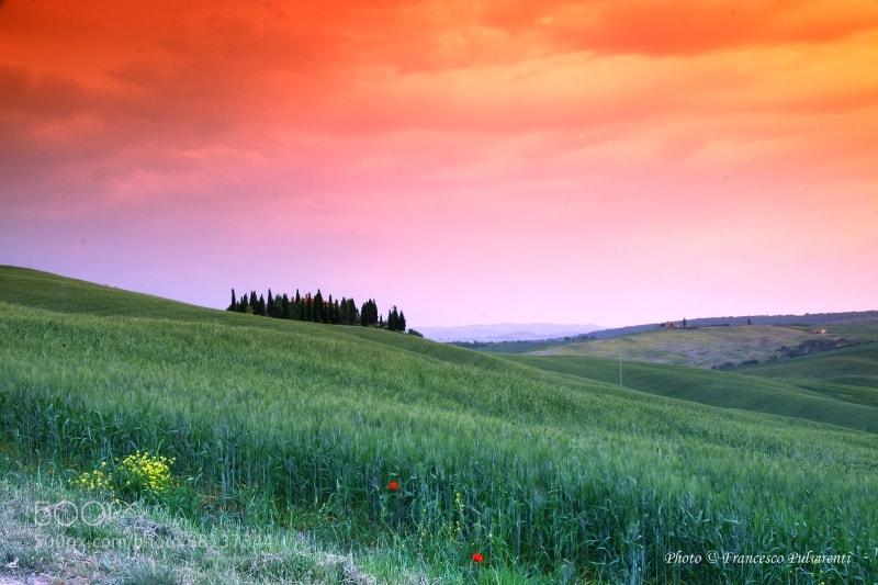Photograph Val d'Orcia-Toscana by Francesco Pulvirenti on 500px