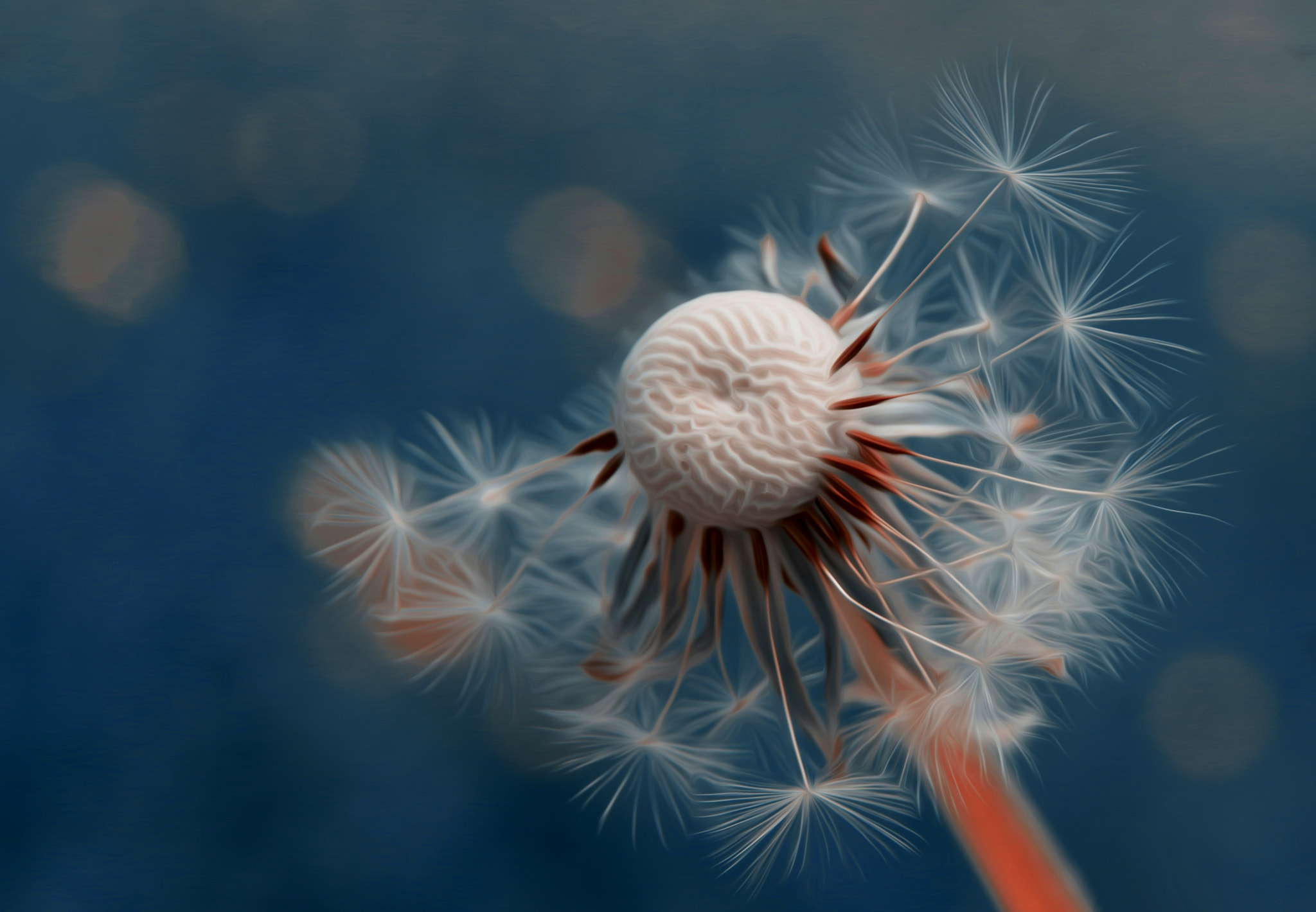 Photograph so many wishes by Tom M. on 500px