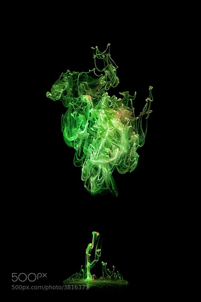 Photograph Mystic Cloud by Markus Reugels on 500px