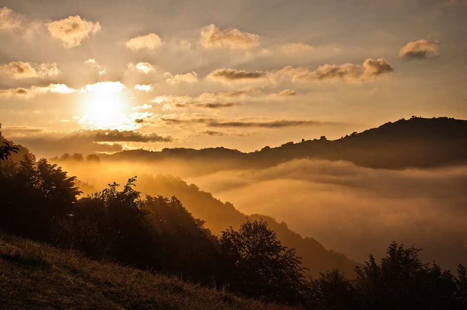 Photograph Good Morning Sunshine! by Harag Ionut on 500px