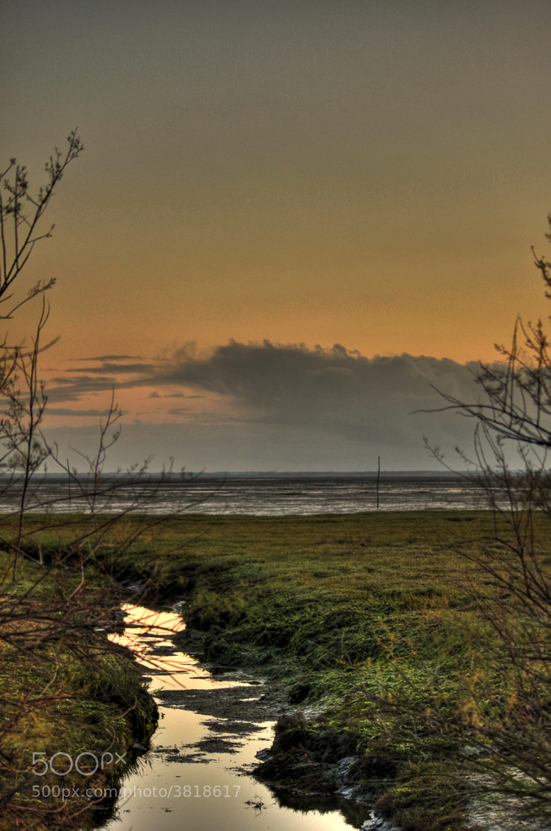 Photograph Low tide by Guillaume tb-pict.com on 500px