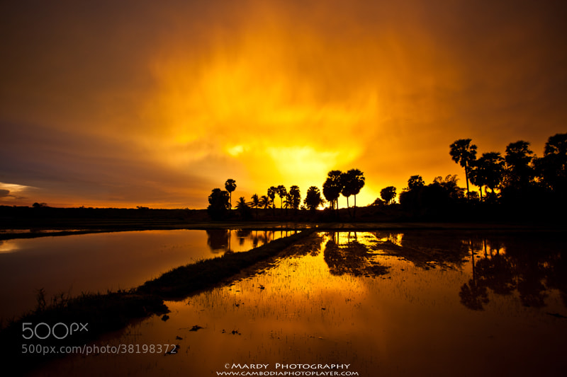 Photograph Flame sky! by Mardy Suong Photography on 500px