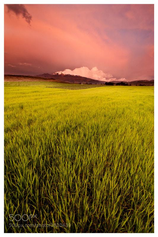 Photograph Cayambe Sunset by Fernando Salas on 500px