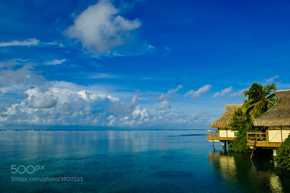 Photograph Moorea by Jin Cho on 500px