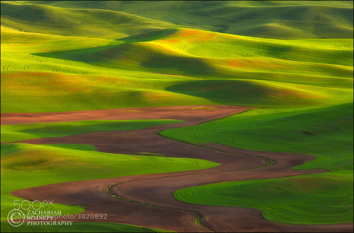 Photograph Palouse Zen by Zack Schnepf on 500px