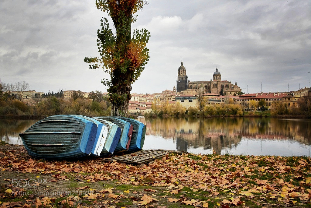 Photograph Barcas & Catedral by Isidoro M on 500px