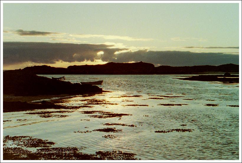 Photograph Midnight Sun by Anne Harestad on 500px