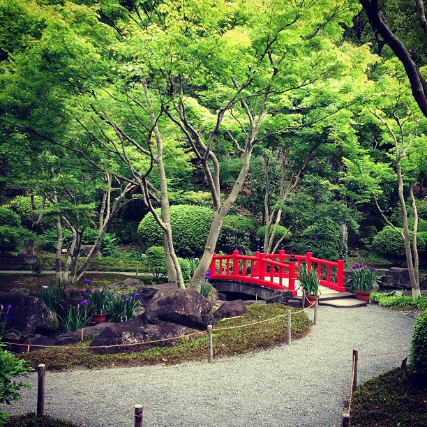 Photograph The quietness of a garden in a Shinto shrine, Kyushu #japanlab #japan by Abigail King on 500px