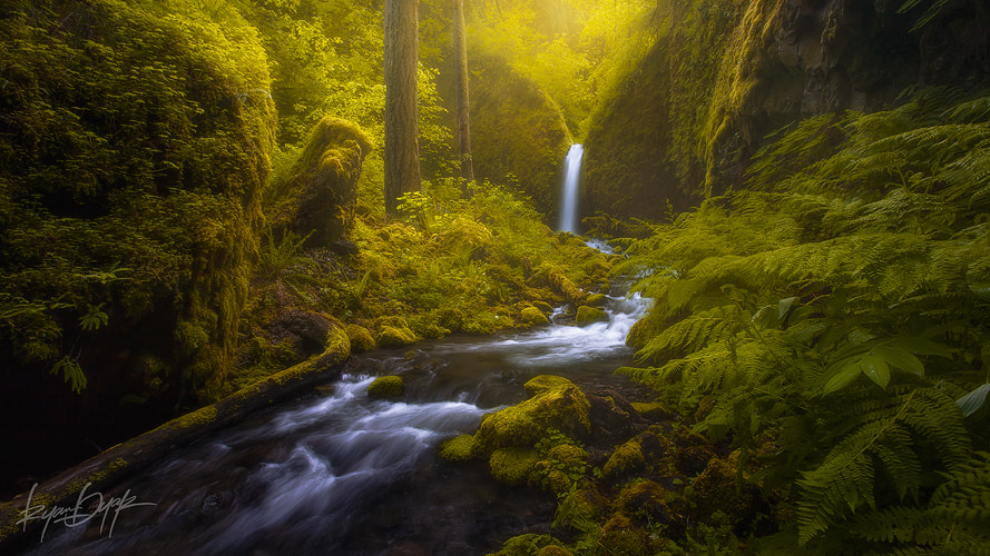 Photograph Sunstorm by Ryan Dyar on 500px