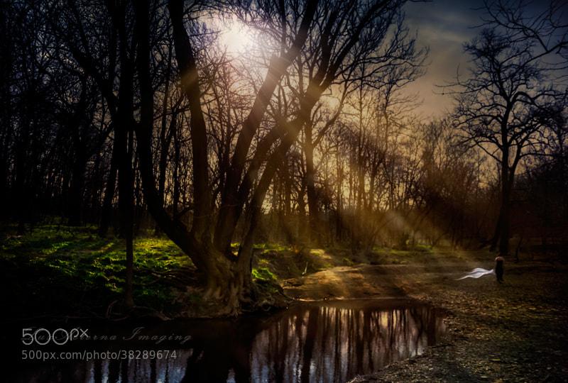 Photograph An Enchanted Twilight  by Julz Kirschenbaum on 500px
