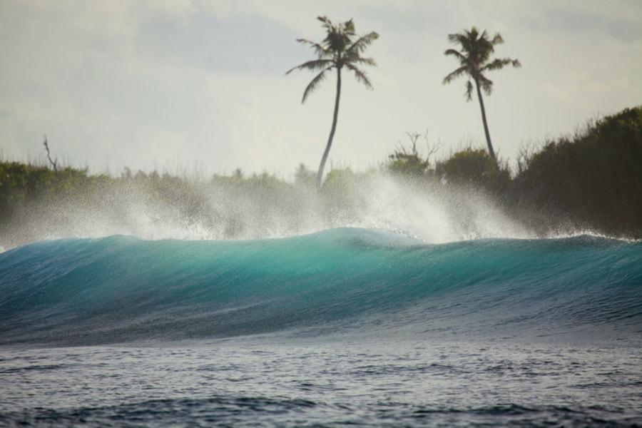 maldivian wave by Tania Elisarieva on 500px.com - Surf en Maldivas