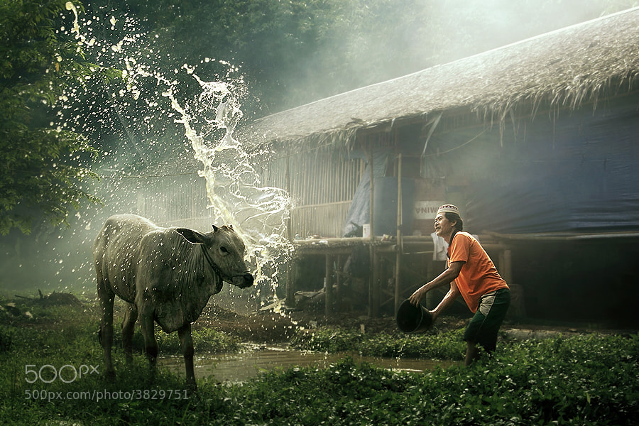Photograph shower me with your love by asit  on 500px