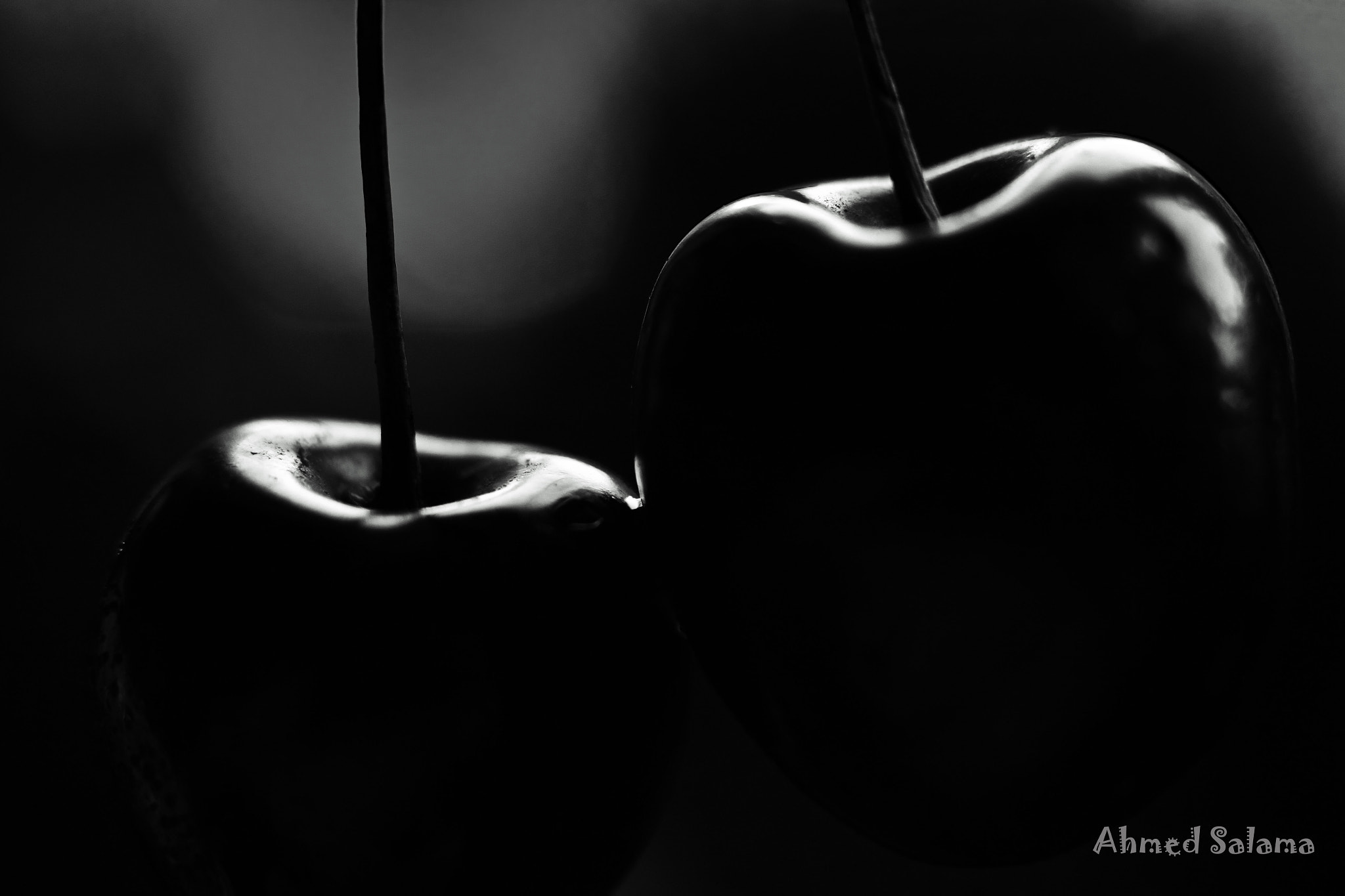 Photograph Cherry by Ahmed Salama on 500px