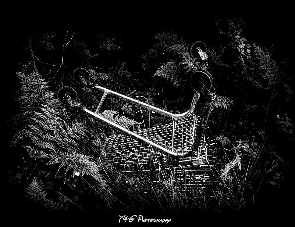 Photograph the misadventures of a shopping cart by T&G Photography  on 500px