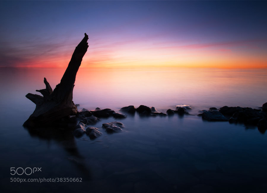 Photograph Driftwood Sunset by Peter Baumgarten on 500px