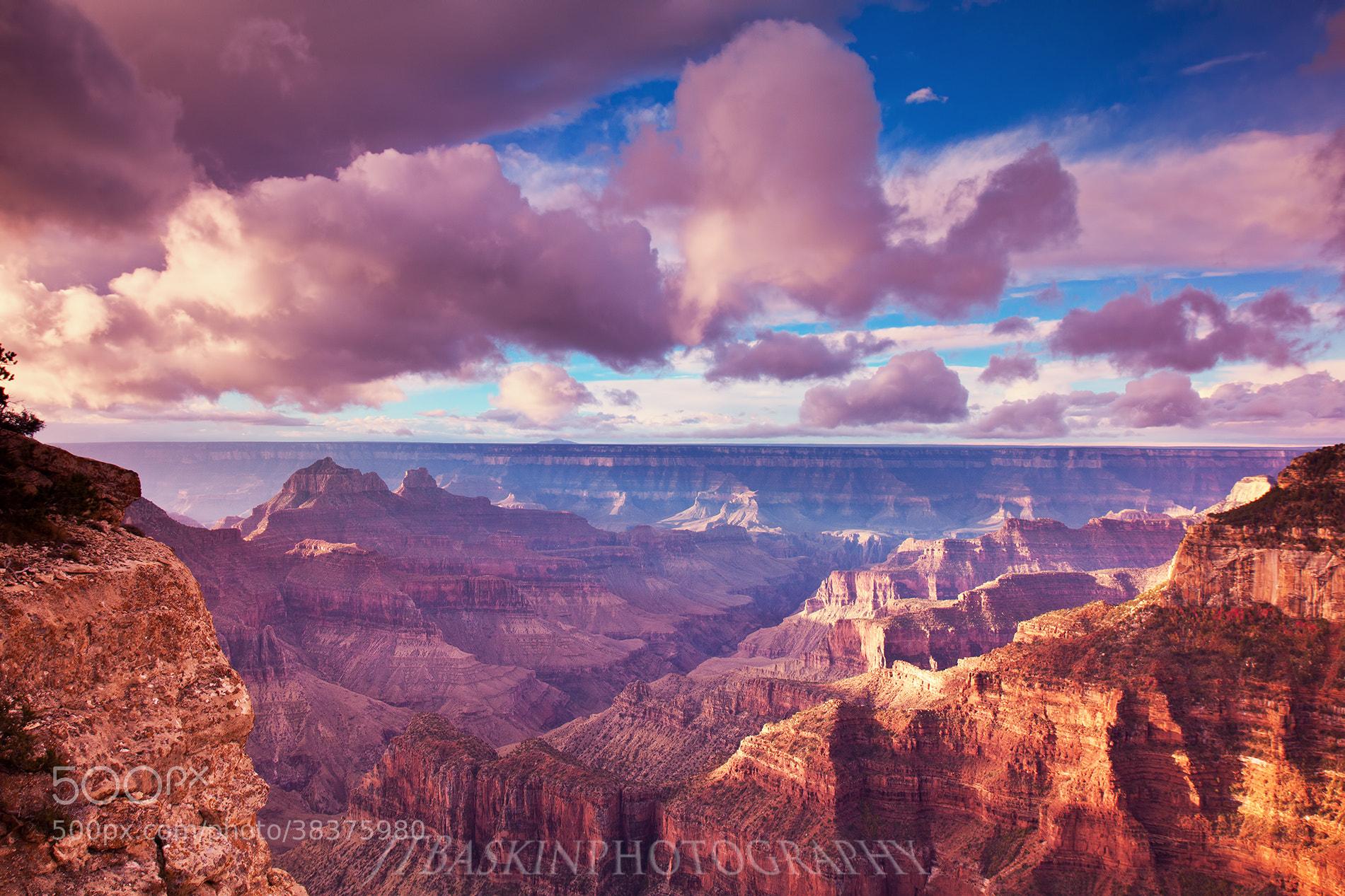 Photograph Grand Canyon Glory - Grand Canyon National Park, AZ by taylor baskin on 500px